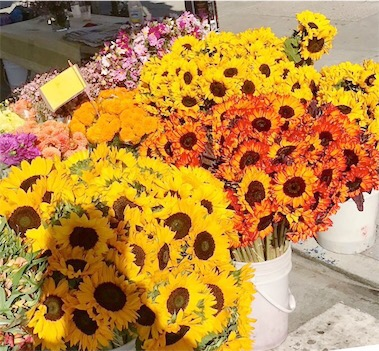 Divisadero Farmers' Market flowers
